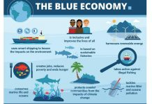 Importance of a Sustainable Blue Economy: Statistics and facts