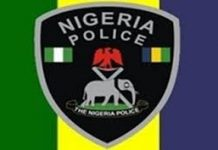 Nigerian Police boss to N1.2m as damages