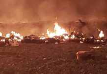 Twenty die and 71 hurt as Mexico oil pipeline explodes