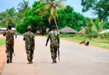 Jihadist attack in Mozambique kills seven