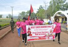 Nigerian Army wives moves to end breast cancer charges women on early warning signs