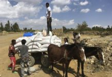 sky news africa https://apnews.com/article/ethiopia-united-nations-kenya-ef0b6b2db2994d4c3042cf19f3d92a2a Click to copy RELATED TOPICS International News AP Top News Africa Ethiopia United Nations Kenya 'Extreme urgent need': Starvation haunts Ethiopia's Tigray