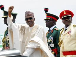 Nigeria's Buhari re-election ends guber race in northcentral Plateau - Party