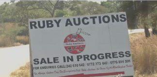 Ex-Zimbabwe's President Mugabe's diary farm equipment auctioned