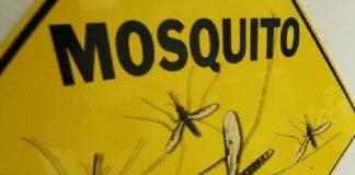 Burundi records over 7 million malaria cases in 2019 - WHO